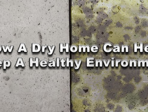 How A Dry Home Can Help Keep A Healthy Environment