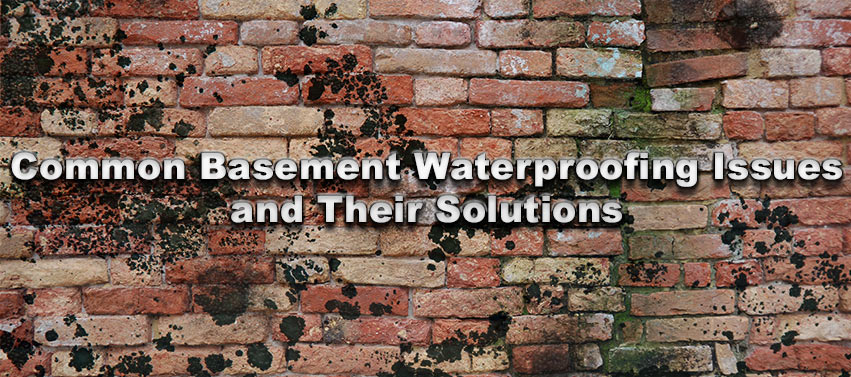 Common Basement Waterproofing Issues and Their Solutions