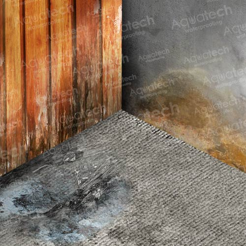 Deterioration-of-carpet-or-wood