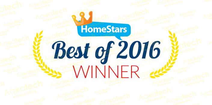 homestars-best-of-2016-winner