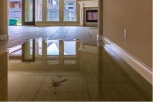 basement flooding in toronto